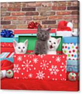 Christmas With Kittens Canvas Print