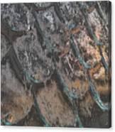 Chrome1 Canvas Print