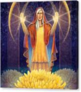 Chrysanthemum - Light In The Darkness Canvas Print