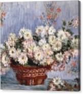 Chrysanthemums, 1878  Canvas Print
