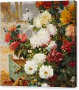 Chrysanthemums In A Walled Garden Canvas Print