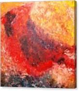 Chubby Cardinal Canvas Print