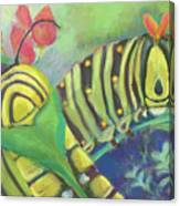 Chubby Little Caterpillars Canvas Print