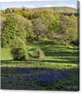Church Stretton Landscape Canvas Print