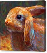 Cinnabun Canvas Print