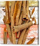 Cinnamon Bark Canvas Print