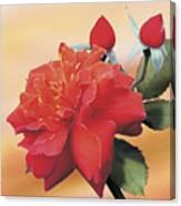 Cinnamon Roses Canvas Print