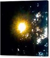 Circle Of Sunglow Through Pine Canvas Print
