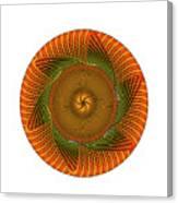 Circle Study No. 429 Canvas Print