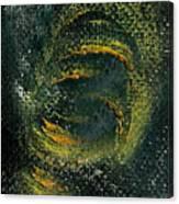 Circmon Canvas Print