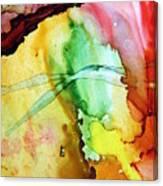 Citrus Punch.. Canvas Print