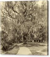 City Park New Orleans - Sepia Canvas Print
