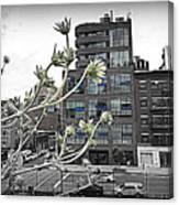 City Sway Canvas Print
