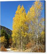 Claree Valley In Autumn - 11 - French Alps Canvas Print