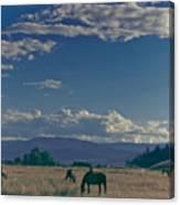 Classic Country Scene Canvas Print