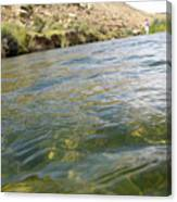 Classified River Canvas Print