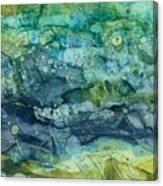 Clear Flow Canvas Print