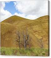 Clear Sky At Painted Hills Canvas Print
