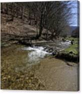 Clear water Shteaza near Rasinari Canvas Print