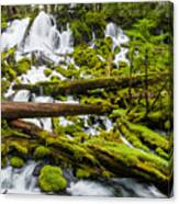 Clearwater Falls And Rapids Canvas Print