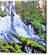 Clearwater Falls, Highway 138, Umpqua National Forest, Oregon Canvas Print