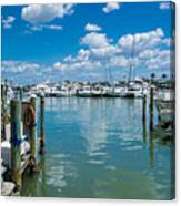 Clearwater Marina Canvas Print