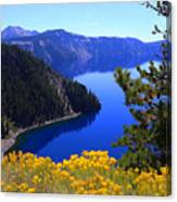 Cleetwood Cove At Crater Lake Canvas Print
