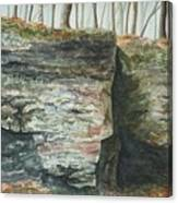 Cleft.  Rock Shelf Fissure And Autumn Leaves Canvas Print