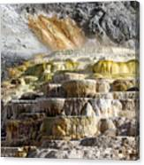 Cleopatra Terrace In Yellowstone National Park Canvas Print