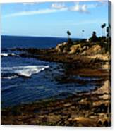 Cliff Drive Laguna Beach Canvas Print