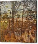 Cliff Dwellers Canvas Print