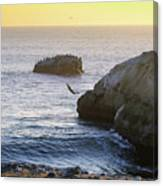 Cliff Jumping To Surf Canvas Print