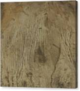 Cliff Trees Canvas Print