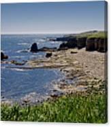 Cliffs Near Souter Lighthouse. Canvas Print