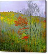 Climb Into Autumn Canvas Print