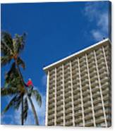 Climbing A Palm Tree Canvas Print