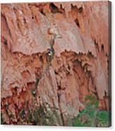 Climbing Mooney Canvas Print