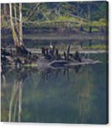 Clinch River Beauty Canvas Print