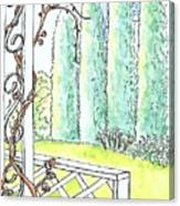 Clinging Vine Canvas Print