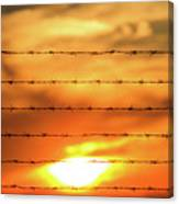 Close-up Of Barbed Wire At Sunset  Canvas Print