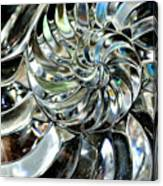 Close-up Of Glass Chambered Nautilus Canvas Print