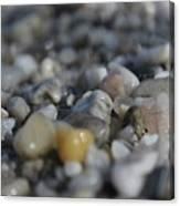 Close Up Of Rocks Canvas Print