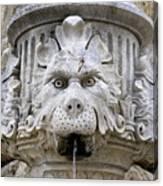 Closeup Of A Public Fountain In Dubrovnik Croatia Canvas Print