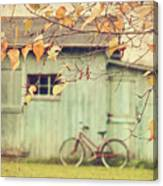 Closeup Of Leaves With Old Barn In Background Canvas Print