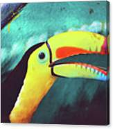 Closeup Portrait Of A Colorful And Exotic Toucan Bird Against Blue Background Nicaragua Canvas Print