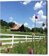Cloud Blossoms Canvas Print