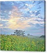 Cloud Filled Morning 2 Canvas Print