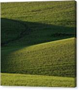 Cloud Shadows On New Growing Crop Canvas Print