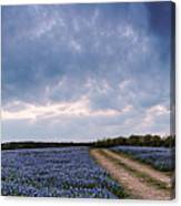 Cloud Vortex Over Bluebonnets At Muleshoe Bend Recreation Area - Spicewood Texas Hill Country Canvas Print