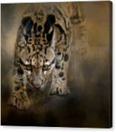 Clouded Leopard On The Hunt Canvas Print